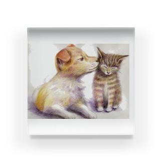 子犬と子猫 Acrylic Block