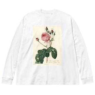 『バラ図譜』  Big silhouette long sleeve T-shirts