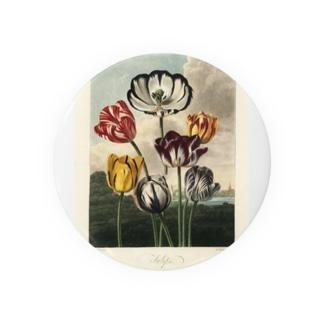 フローラの神殿 - チューリップ Badges