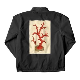 赤サンゴ コーチジャケット