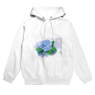紫陽花 フーディ