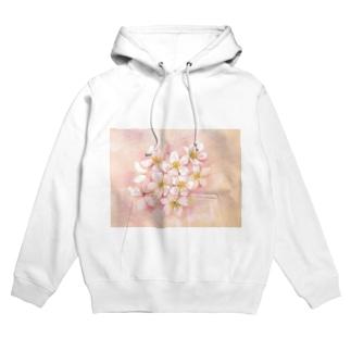 桜 フーディ