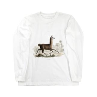 『自然科学史』 Long sleeve T-shirts