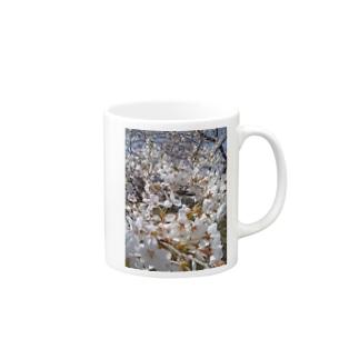 桜 Mugs