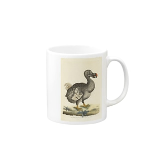 絶滅したドードー鳥 Mugs