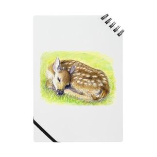 お昼寝の子鹿 ノート