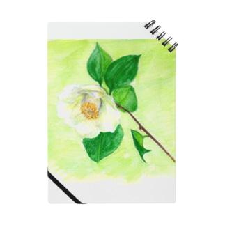 白い椿 ノート
