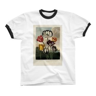 フローラの神殿 - チューリップ リンガーTシャツ