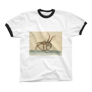 オウムガイ リンガーTシャツ