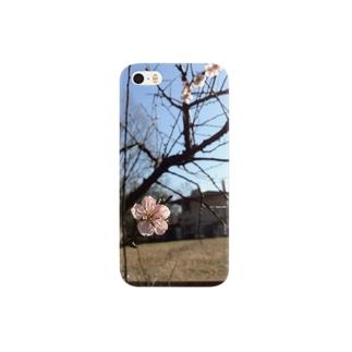 u-me Smartphone cases