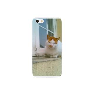 マルタ猫の幸福(ブサカワ) Smartphone cases