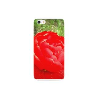 真っ赤なチューリップ。 Smartphone cases
