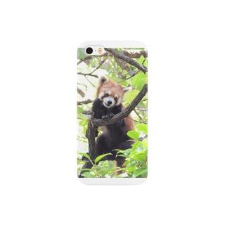 Lesser panda Smartphone cases