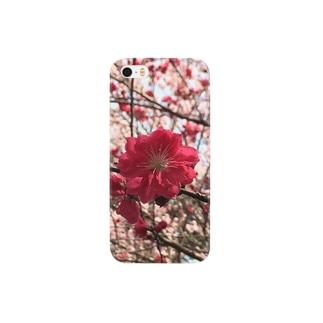Munehiroの源平桜 Smartphone cases