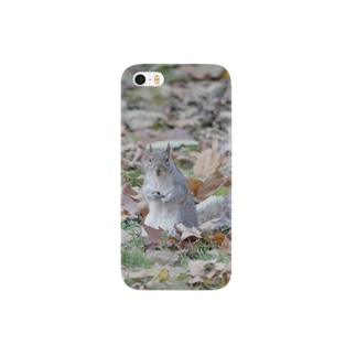 squirrel Smartphone cases