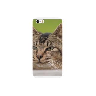 AD-Yの顔アップねこ Smartphone cases