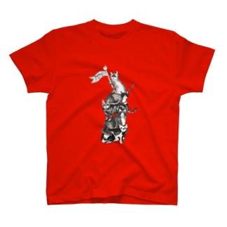 猫サーカス 赤 Tシャツ