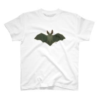 コウモリT Tシャツ