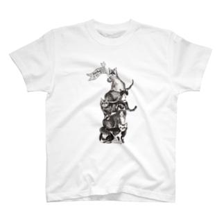 猫サーカス 白 Tシャツ