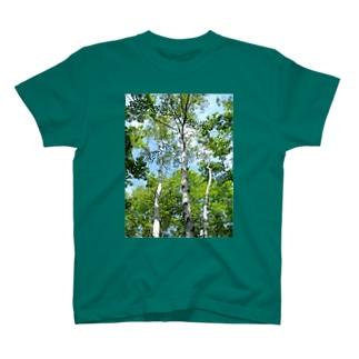 white birch T-shirts