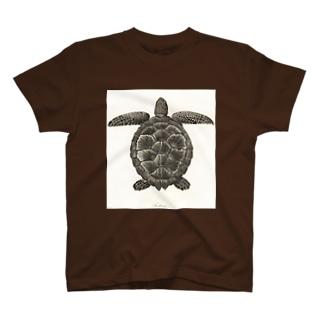 カメ T-shirts