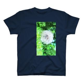 すけぇちよ(すけにゃんぼう)のたんぽぽの綿毛 T-shirts