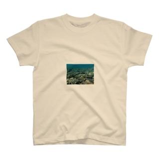 wanaka michihitoの辺野古の海 T-shirts