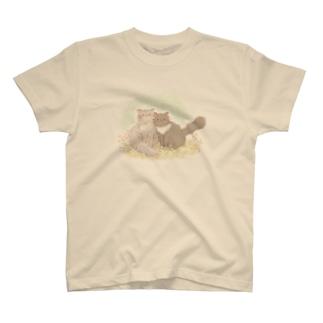 *ねこねこ* T-shirts