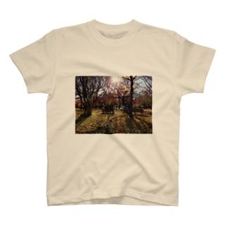 公園ベンチ T-shirts