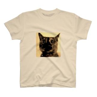 錆猫 T-shirts