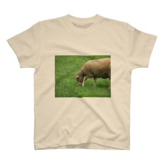 夢を見た T-shirts