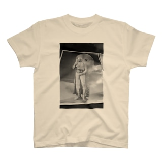 Microphone Performance T-shirts