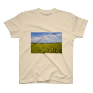 さとうきび畑 T-shirts