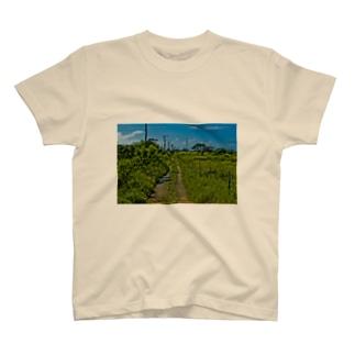 hiro_photoの竹富島 T-shirts