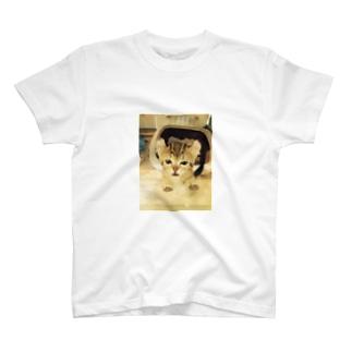 にゃぁ Tシャツ