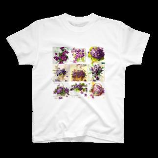 リラのアンティークスミレTシャツ
