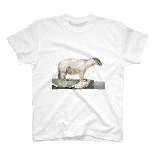 白クマ Tシャツ