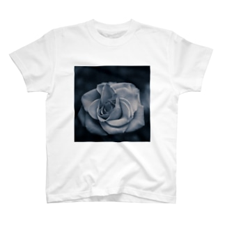 baramonochrome T-shirts