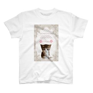 可愛い!子猫ちゃん T-shirts