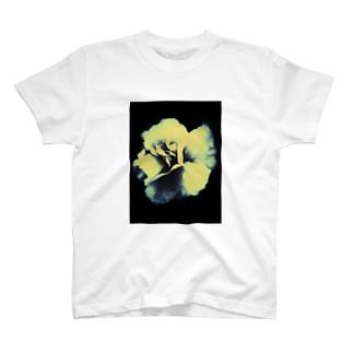 HelloPachiruのMOnO T-shirts