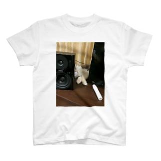 2014-04-17 18.53.01.jpg T-shirts