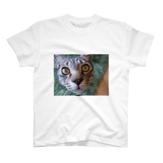 寅吉。 T-shirts