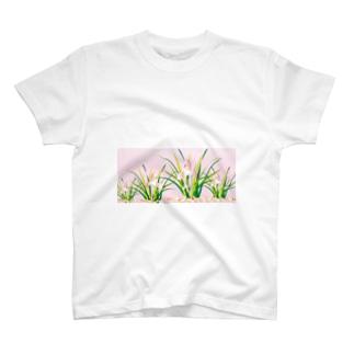 春蘭のお洒落なピンクの欄の花 T-shirts