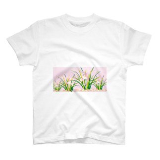 ジルトチッチのデザインボックスの春蘭のお洒落なピンクの欄の花 T-shirts