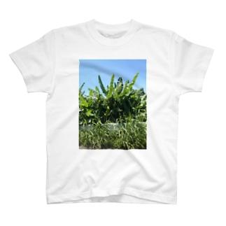 野良バナナ T-shirts