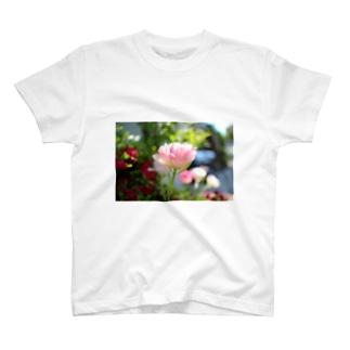 ちゅーりっぷとか T-shirts