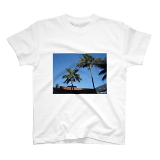 Los Angeles Malibu Palm Tree T-shirts