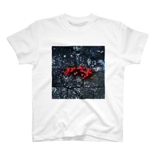 石垣の花 T-shirts