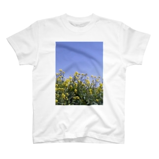 菜の花、良い天気 T-shirts