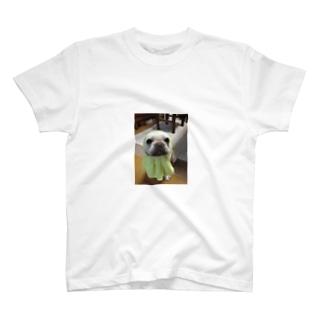 フレブル豆絞り T-shirts